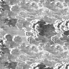 Обои Cole&Son Коллекция Fornasetti Senza Tempo дизайн Nuvolette арт. 114/29058